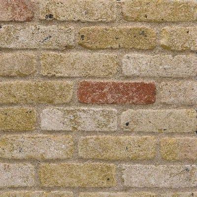 Wienerberger Smeed Dean Greenwich Yellow Multi Rustica Stock Facing Brick Pack of 400