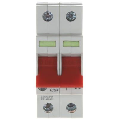 Wylex 100A Double Pole Main Switch Isolator WS102
