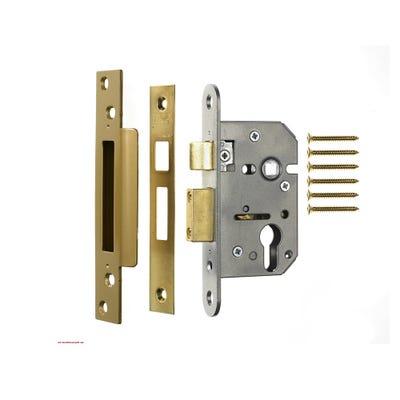 ERA Euro Cylinder Sashlock 64mm Brass (Case Only)