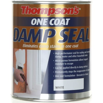 Thompson's One Coat Damp Seal White