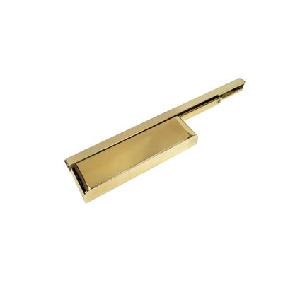 Rutland Cam Action Door Closer & Cover Polished Brass