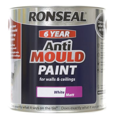 Ronseal 6 Year Anti Mould Paint Matt White