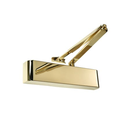 Rutland Door Closer EN2-4 with Delayed Action & Polished Brass Curved Cover