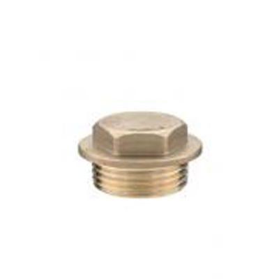 Brass Plug 1''