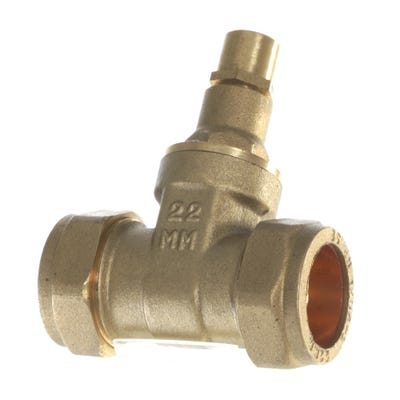 Brass Lock Shield Gate Valve 22mm