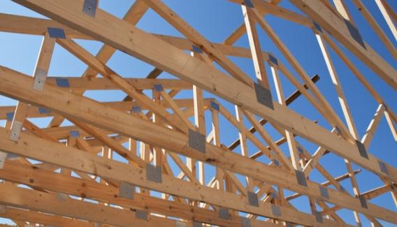 timber buying guides